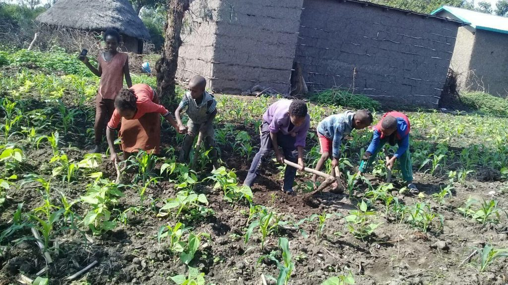 children caring for crops in Ethiopia