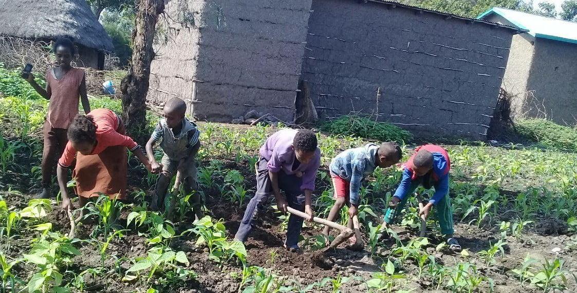 children working hard farming
